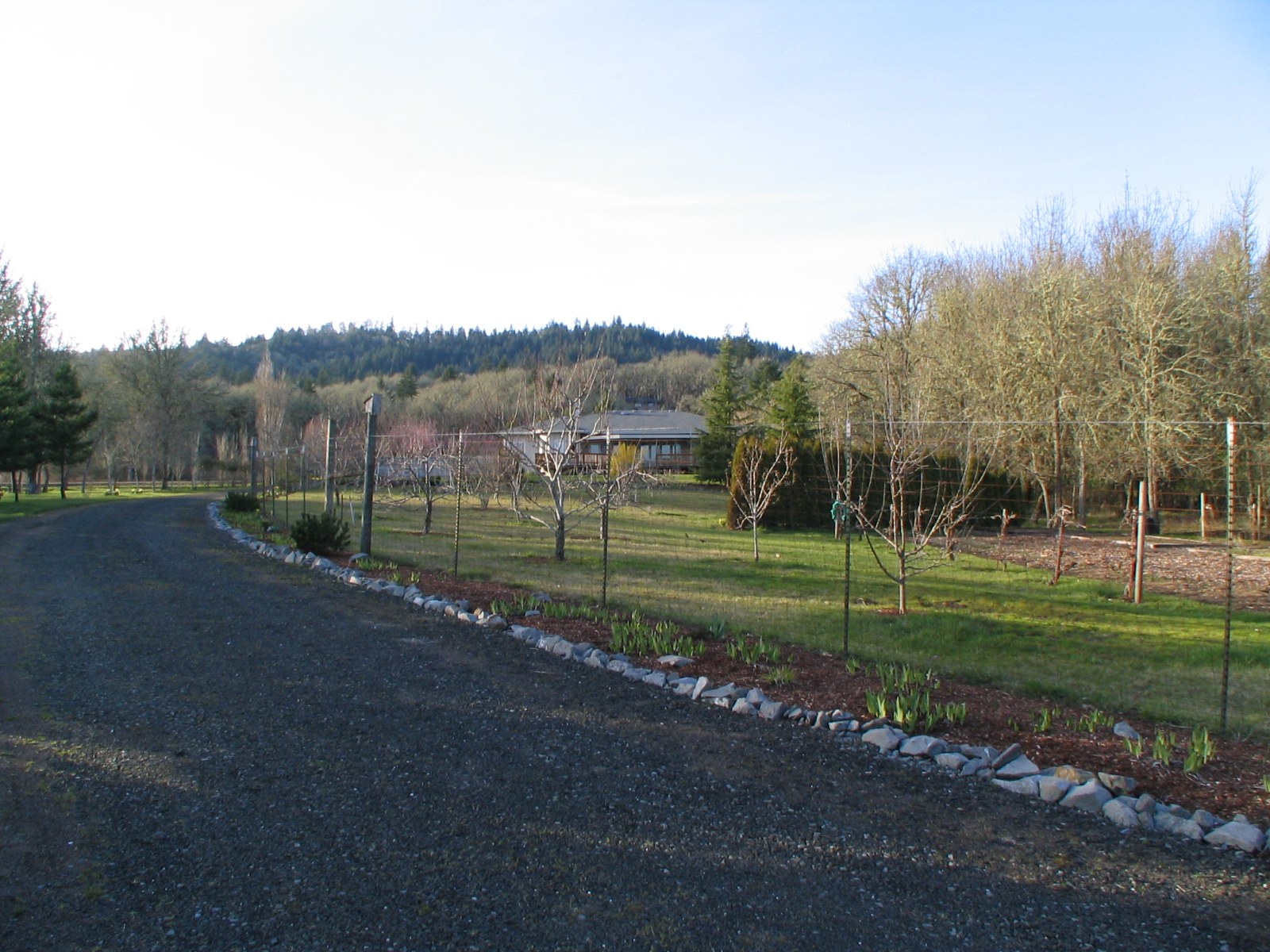 2081 Dawnwood Drive Philomath Oregon-- Down the Gravel Road