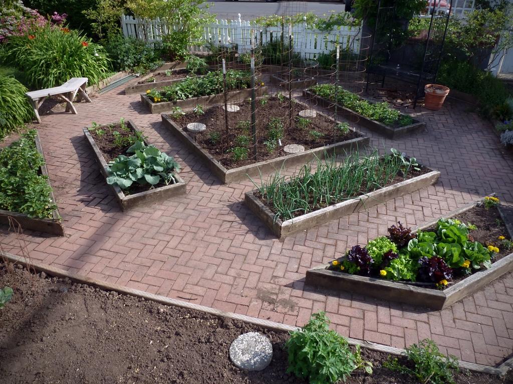 206 NW 8th Street, Corvallis, Oregon-VegetableGarden