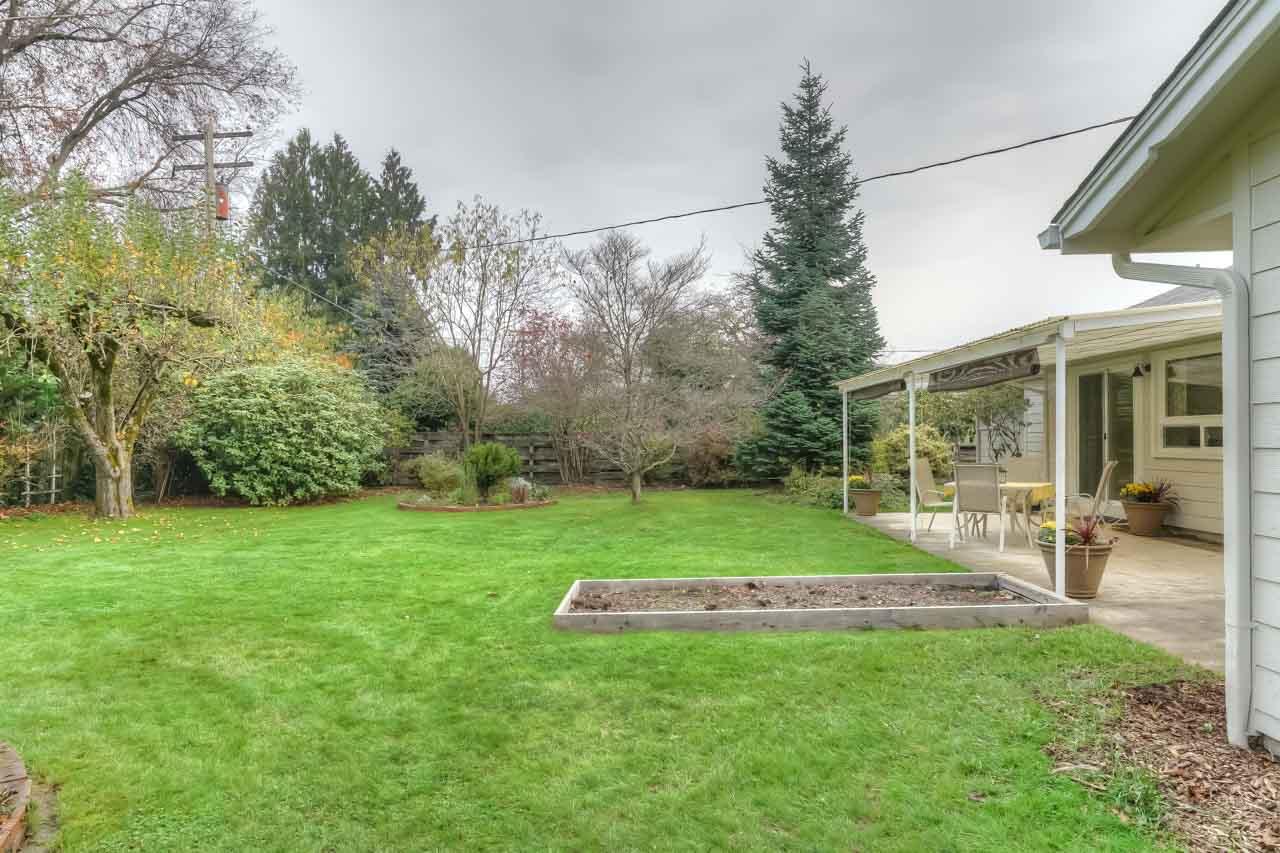 1540 NW 12th Street Corvallis Oregon-- Back Yard