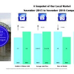 albany-market-stats-2016-11-nov