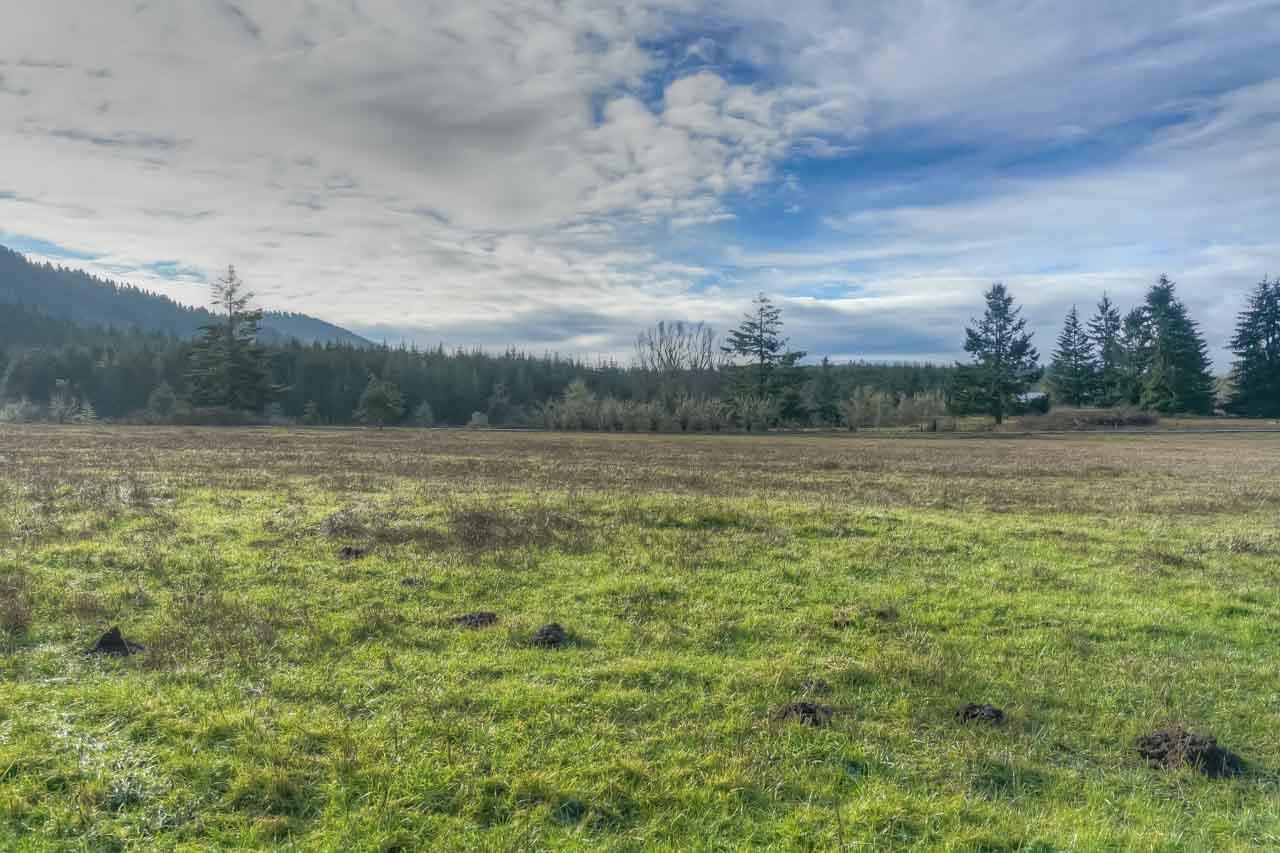 37963 Kings Valley Highway, Kings Valley Oregon-- Land